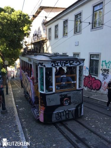 Lisbon5.3